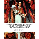 Commentaries on the Twelve Minor Prophets, Volume 3: Jonah, Micah, Nahum