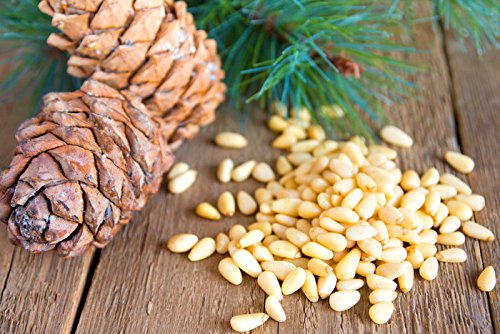 Pine nut flakes - PINE POWER. 17.5 oz./500 g. Raw product. Pressed from wild harvested, organic pine nuts. by Siberian Pine Nut Oil (Image #5)