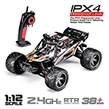 HOSIM New Version RC Truck 9123, 1/12 Scale Radio Controlled Electric Car - 38km/h Offroad 2.4Ghz 2WD Radio Controlled Truggy - Best Gift for all Car Enthusiast (Orange)