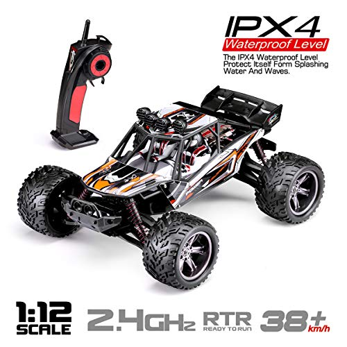HOSIM RC Truck 9123, 1/12 Scale Radio Controlled Electric Fast Racing Car - High Speed 38km/h Offroad 2.4Ghz 2WD Radio Controlled Monster Truck Truggy - Best Gift for All Car Enthusiast (Orange)