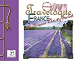 Travelogue…France by Urania Christy Tarbet: A visual journey of one artist's visit to Normandy, Giverney, the museums of Paris, and the Lavender fields of southern France