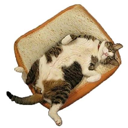 Desconocido Tostadas Pan Cojines, goodchanceuk Vivid colchón para Gatos y Perros pequeños Mascota Suave y