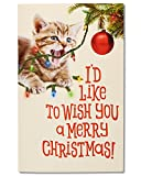 American Greetings Funny Kitten Christmas Card with Sound