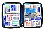 First Aid Only All-purpose First Aid Kit, Soft Case with Zipper, 299-Piece Kit, Large, Color Varies by First Aid Only