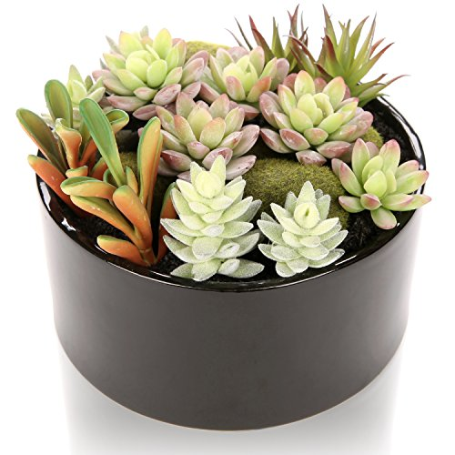 MyGift 6 inch Realistic Artificial Faux Mixed Succulent Plants Arrangement w/ Black Round Ceramic Vase