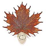 Iridescent Copper Dipped Sugar Maple Leaf Nightlight in Gift Box
