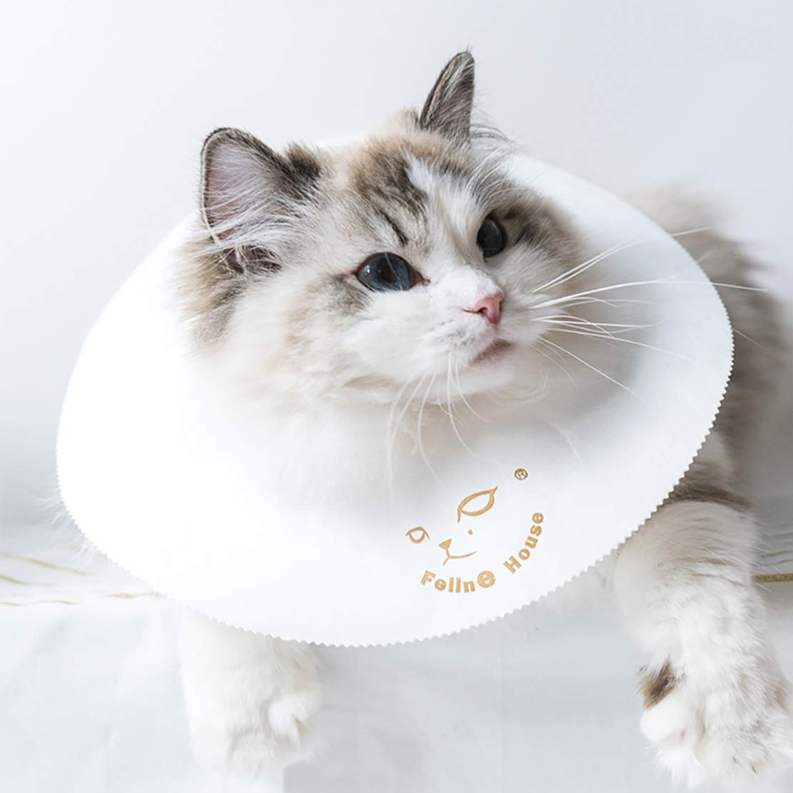 CAFILRA Pet Recovery E-Collar Cones (10 Pack) for Cats & Small Dogs After Surgery,Comfy Soft Elizabethan Kitten Neck Cone of Shame,Puppy Head Medical Collar,DIY to Prevent Licking Wounds & Rashes (L) by CAFILRA