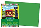 Pacon Riverside Construction Paper, 12-Inches by 18-Inches, 50-Count, Green (103620)
