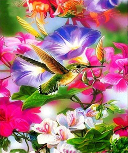 EOBROMD Diamond Painting Full Drill, 5D DIY Embroidery Painting Wall Sticker for Home Decor, Hummingbird (12 x 16inch) ()