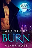 img - for Midnight Burn: a New Adult Paranormal Romance Novel (Gothic Angels) book / textbook / text book