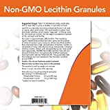 NOW Supplements, Lecithin Granules with naturally