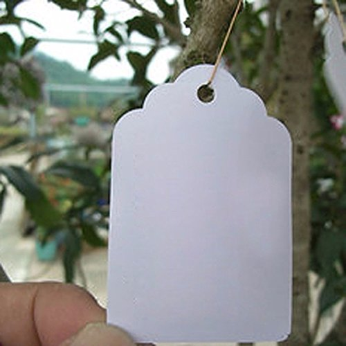 Tacoli 100Pcs/lot Plants Hang Tag Labels Seedling Garden Flower Pot Plastic Tags Number Plate Hanging Reusable PVC Garden Tools by Tacoli