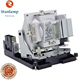 PROJECTOR LAMP BULB FOR OPTOMA DX339 DAEXUUL BR300 DS229 EX556 TX556 TX556-3D