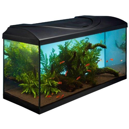 Acuario protectora 80 x 35 cm, 2 x 18 W, color negro, incluye iluminación: Amazon.es: Productos para mascotas