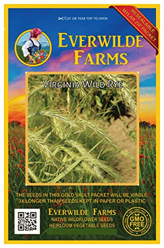 Everwilde Farms - 1 Oz Virginia Wild Rye Native Grass Seeds - Gold Vault