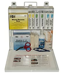 First Aid Only (6120) ANSI Plus #50 207 Piece Steel Case First Aid Kit with Wall Mount, 9.5\