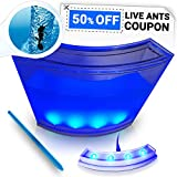 ANTARTISTS Ant Farm w/ LED Light, Enhanced Blue Gel and Discount Ant Coupon. Educational Observatory for Kids & Adults. Fun Desk Toy Accessory & Learning Science Kit.