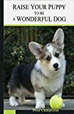 Raising Your Puppy to Be a Wonderful Dog, Mr. Pete Campione, 0985411740