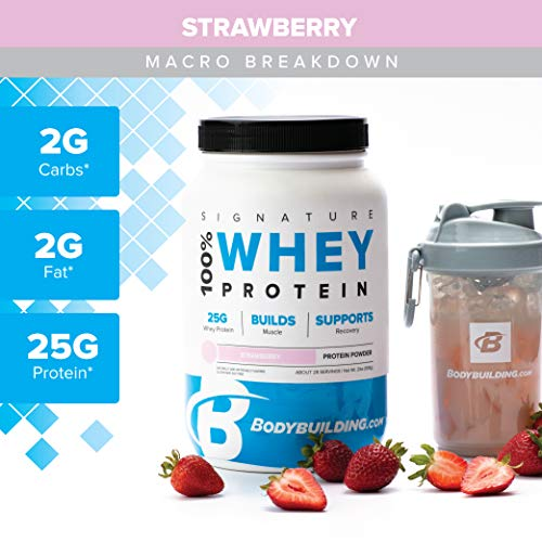 Bodybuilding Signature 100% Whey Protein Powder | Strawberry | 25g of Protein per Serving | 5 lbs ()