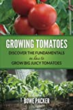 growing tomatoes - Growing Tomatoes: Discover The Fundamentals On How To Grow Big Juicy Tomatoes