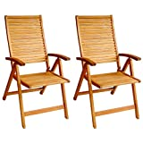 LuuNguyen 79001 Logan Outdoor Hardwood 5 Positions Reclining Folding Arm Chair, Natural Wood Finish, 2 Count Review