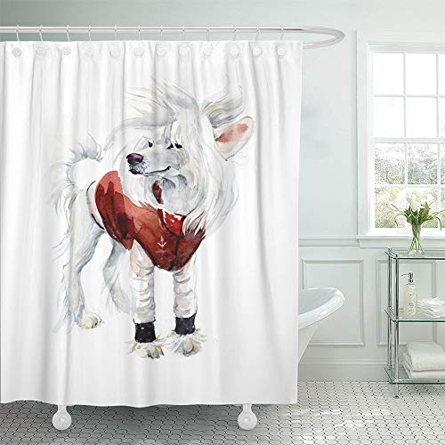 Emvency Shower Curtain Waterproof Decorative 72 x 78 inches Adorable Chinese Crested Dog Red Costume Portrait Animals Watercolor Canine Cold Set with Hooks Bathroom Curtain ()