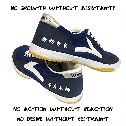 DOUBLESTAR MR Rubber Sole Non-Slip Stylish Kung Fu Shoes for Men/Women|Parkour|Martial Art|Tai Chi|Wu Shutdown|Sneaker/US 10 Men/US 10.5 Women