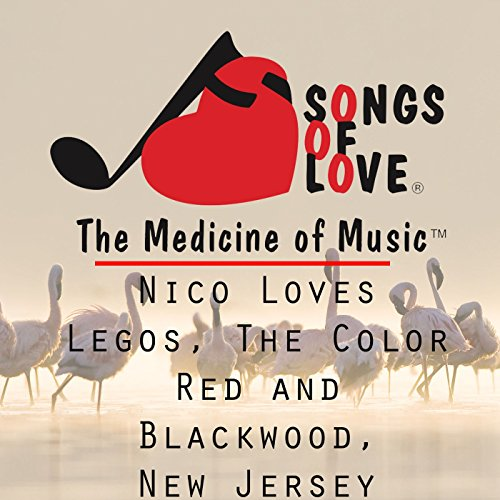 Nico Loves Legos, the Color Red and Blackwood, New Jersey