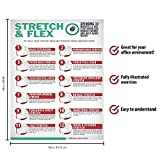 Stretch and Flex 10 Minute Exercise Poster for Work Home and Gym - Range of Motion Stretching Exercises Guide for Employers and Employees - Easy Effective Body Stretching Chart