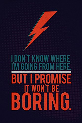 Robin Hood Merchandise It Wont Be Boring David Bowie Quote Art Print Poster
