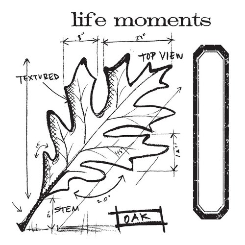 s with Clear Stamps by Tim Holtz, Leaf Blueprint, 4-Pack (Expressions Stamp Sets)
