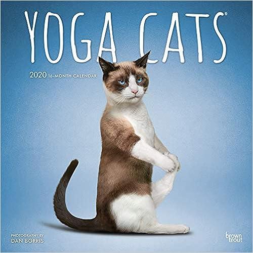 Ebook epub Yoga Cats 2020 Calendar