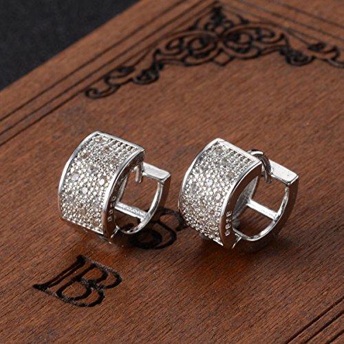 Fashion Crystal Sterling Earrings Jewelry