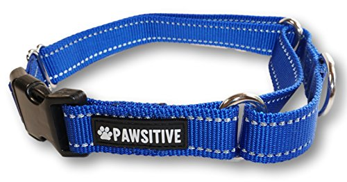 Pawsitive Pet Reflective Nylon Martingale Collar Premium Nylon Adjustable Training Collar for Dogs We Donate a Collar for Every Collar Sold. by Pawsitive Pet