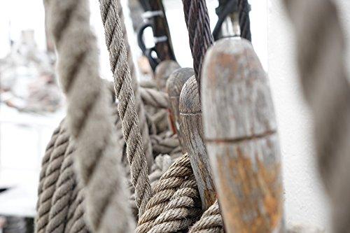Home Comforts LAMINATED POSTER Frisium Mare Hamburg Elbe Training Ship Sail Poster 24x16 Adhesive Decal -