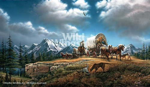 Wild Wings O Beautiful For Spacious Skies by Terry Redlin Limited Edition Print of 29500 Signed & Numbered