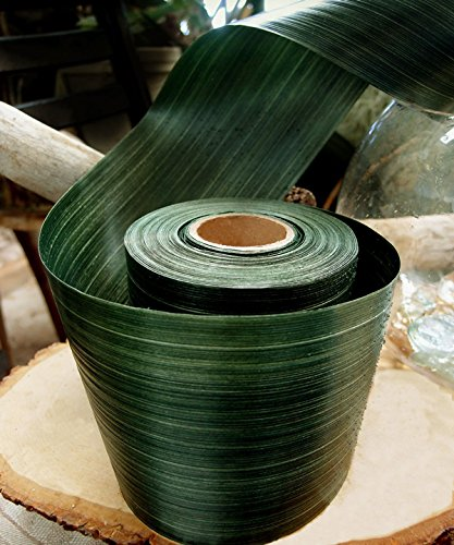 (Ohah Craft Solid Green Variegated Aspidistra Ti Leaf Waterproof Floral Ribbon 4 inch x 50 Yard (Natural 4