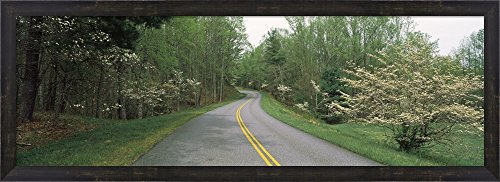 Road passing through a landscape, Blue Ridge Parkway, Virginia, USA by Panoramic Images Framed Art Print Wall Picture, Espresso Brown Frame, 39 x 14 inches