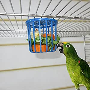 Qiman Jaula Colgante para Pájaros de Loro, comedero Colgante para ...