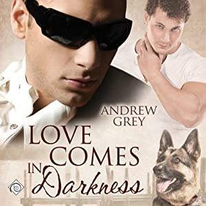 Love Comes in Darkness Audiobook