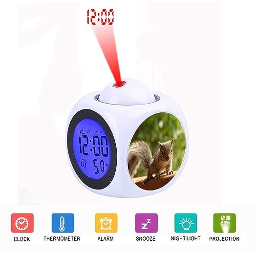FDC Braun Squirrel - Despertador Digital con Pantalla LCD y ...