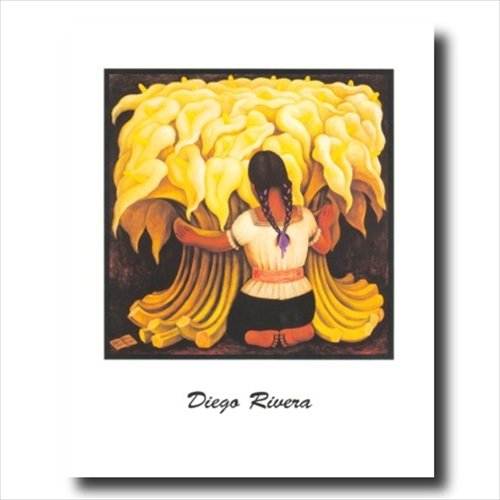 Diego Rivera Braids Lady Flower Contemporary Wall Picture 16x20 Art Print