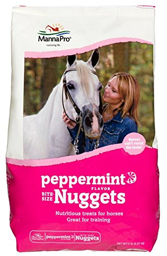 Peppermint Nuggets (3 Packs of Manna Pro 1 lb. Peppermint Flavor Bite Size Nugget Treats for Horses. (Peppermint))