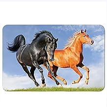 """Horse Floor Mat Coral Fleece Home Decor Carpet Indoor Doormat Kitchen Floor Mat 16""""x 24""""(30)"""
