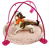 Foldable Cat Bed Multi-Function Pet Pad Interactive Activity Playing Soft Mat for Kittens Hammock Tent Cats Play Center with Hanging Catnip Bells Ball and Feather Toy