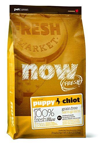 NOW! Petcurean Fresh Grain Free Puppy Food, 6-Pound bag Review