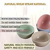 V SSS Mart Premium Quality Portable Wheat Straw Eco