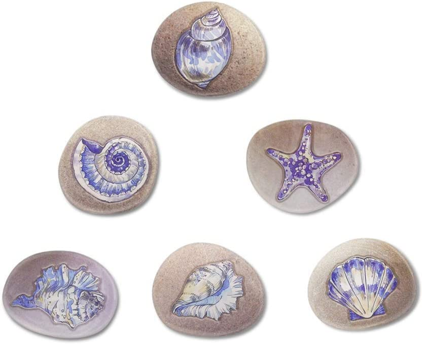 Fridge Magnets for Refrigerator Ocean Beach Cute Seashell Decorative for Office Whiteboard Lokers Gifts for Kids Adults