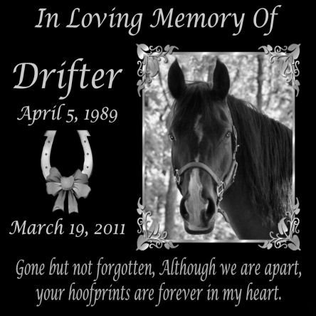 12 x 12 Lazer Gifts Personalized Gone But Not Forgotten Black Granite Pet Memorial Marker Style - Style Drifter
