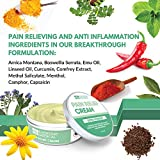 Everyday Medical Arthritis Pain Relief Cream I